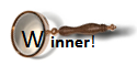 Winner magnifying glass icon