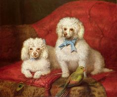 Painting of two lapdogs